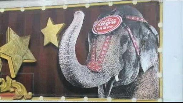 Circus elephant shot in drive-by shot in Miss.