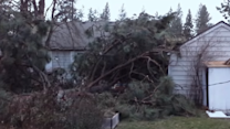 Storm Sends Tree Crashing Down Onto Washington Home