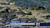 Ruptured Oil Pipeline In Santa Barbara To Be Removed, Volunteers Requested To Help Clean Up