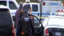 Missing Staten Island brothers found dead