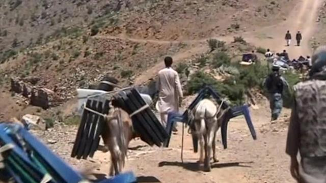 Donkeys deliver ballot boxes for Afghanistan's presidential election