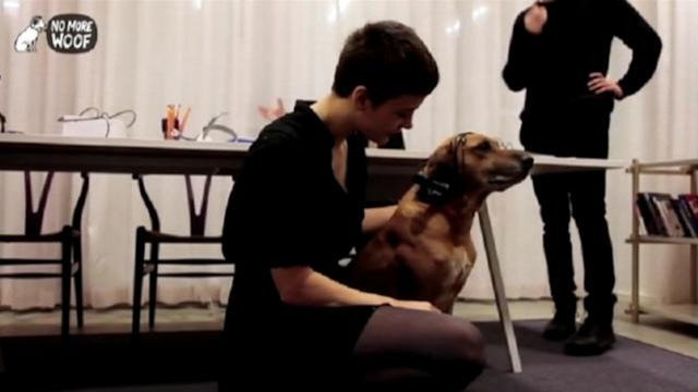 Device Aims to Translate Dog Thoughts Into Words