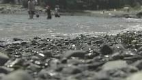 Maine Beaches Rank 23rd For Water Quality