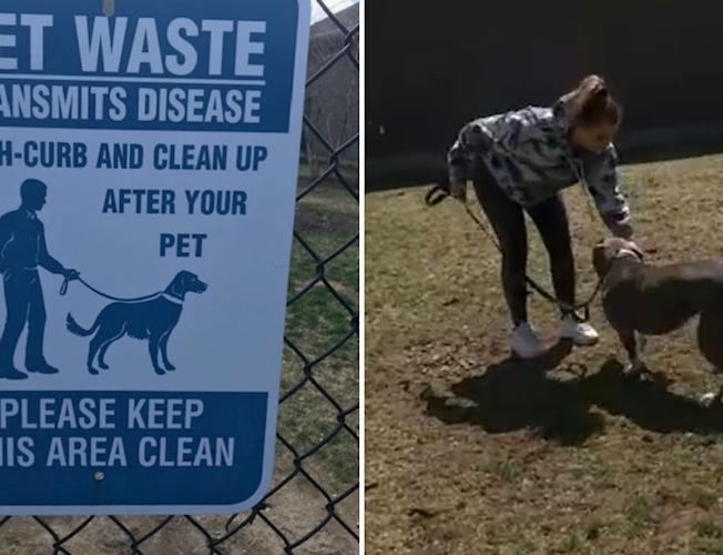 Long Island Apartment Complex Insutes Dog Dna Program To Cut Down On Pet Waste Video