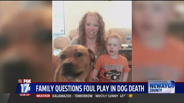 Family Suspects Foul Play After Finding Their Dead Dog On Porch