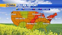High Pollen Across the Plains and Northeast