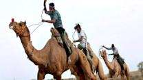 Indian Camel Racing