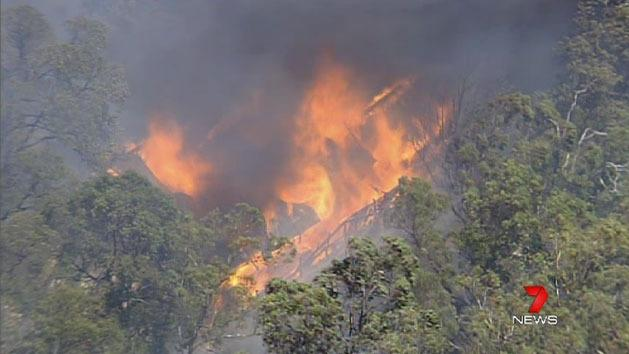 Govt agrees on bushfire payouts