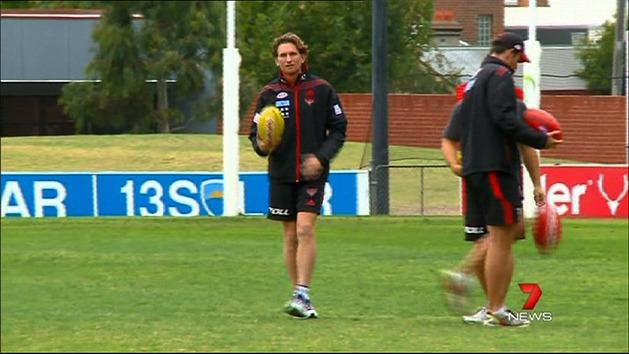 Hird hit with drug allegations