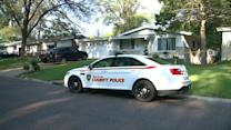 Missouri 11-year-old shoots to death teen entering home: police
