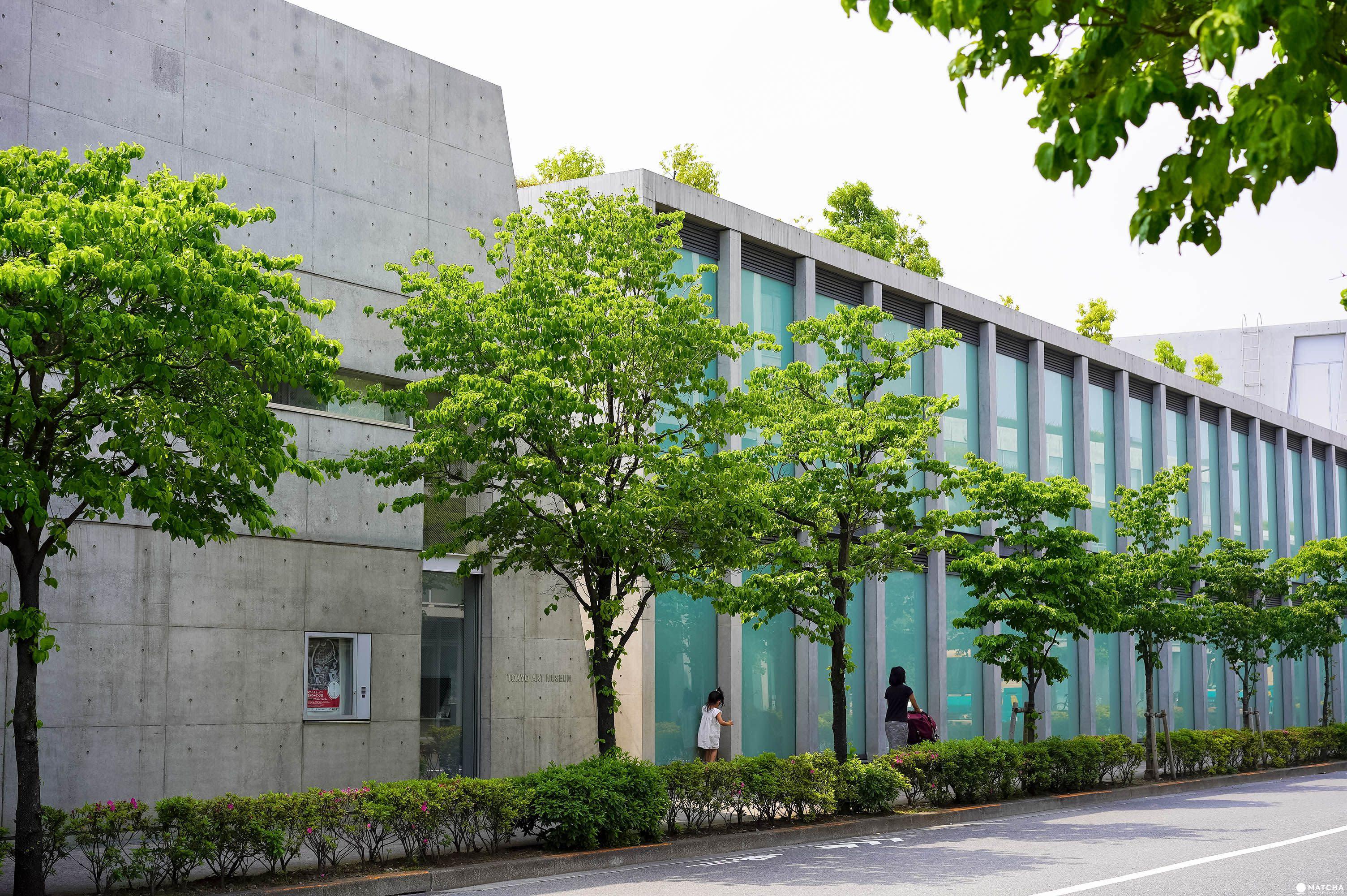 安藤忠雄街道 ANDO STREET