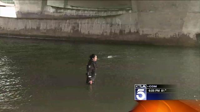 Woman`s Body Found Under Bridge in Newport Beach