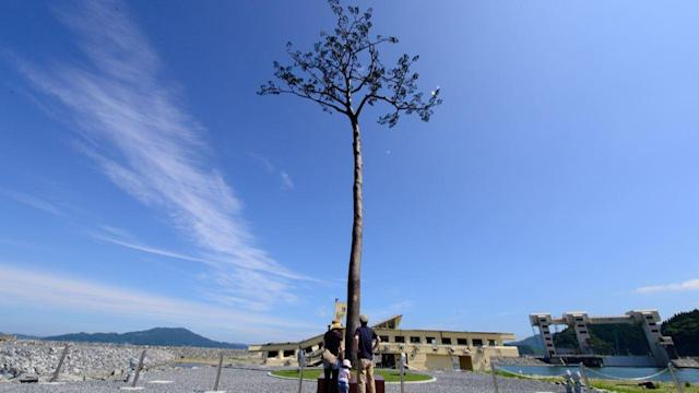 Three Years After Tsunami, Town Still Recovering