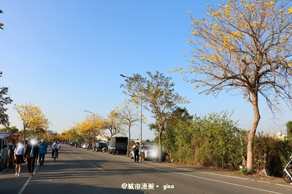IMG_8545.JPG