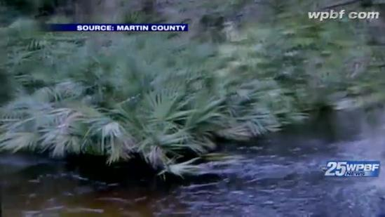 Martin County worker rescues boy caught in drainage ditch