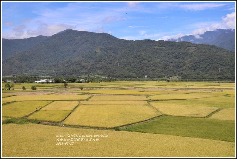 長富大橋(大地色塊)-2018-06-10.jpg
