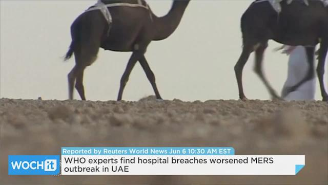 WHO Experts Find Hospital Breaches Worsened MERS Outbreak In UAE