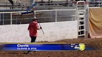 Clovis to hold 99th annual rodeo, a local tradition
