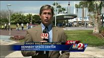 'Angry Birds' invade Kennedy Space Center