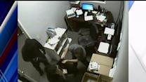 Video Shows Robber Holding Up Sprint Store