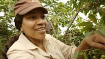 Grace Hightower De Niro on Her Rwandan Coffee Company