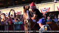 All Eyes On California Chrome As He Makes Run At History