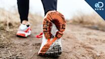 Why You Need To Walk 10,000 Steps A Day - Discovery News