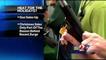 Guns popular Christmas present in Florida