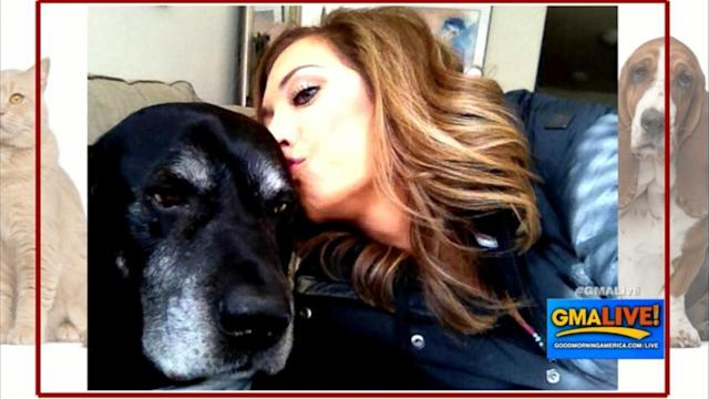 Ginger Zee Celebrates 12 Years with Man's Best Friend