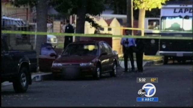 San Fernando Valley murders down 35 percent