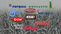 How important are genetically modified foods?