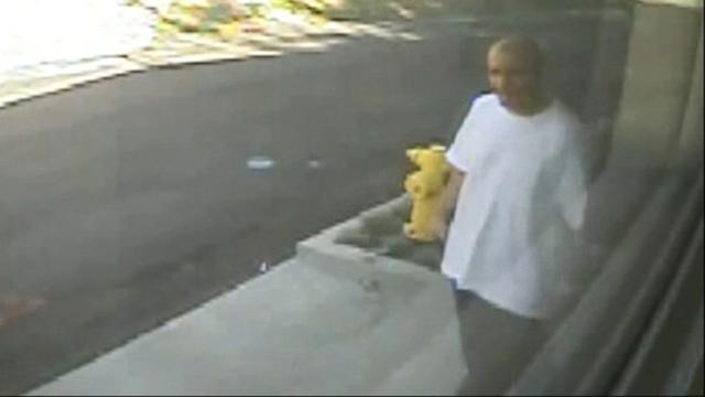 Suspect Heads for the Hollywood Hills in Series of Thefts