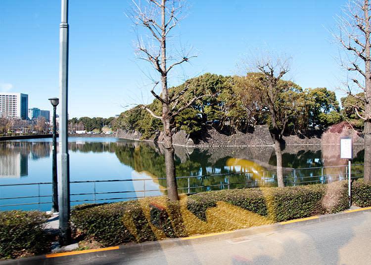 滿地翠綠的皇居,美麗的綠木倒影映照在護城河的水面。