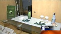Vet Recommends Medical Marijuana for Pets in Pain