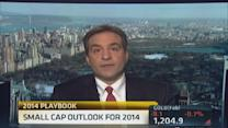 Small Cap outlook for 2014