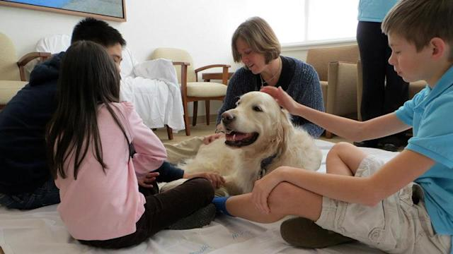 Therapy dogs help Duke cancer patients