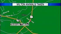 Nealry 100 animals seized from Wilton home