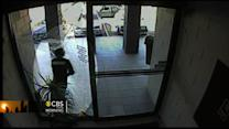 Purse snatcher smashes into glass door
