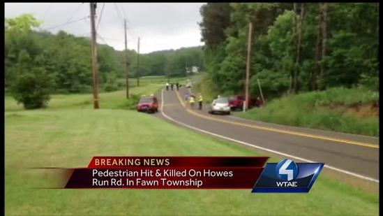 Person hit, killed by car in Fawn Township