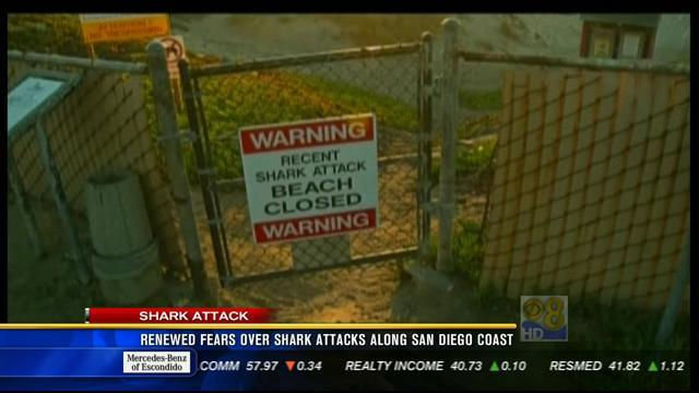 Fatal shark attack renews fears along San Diego coast