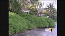 Former super-model's Hawaii business is under scrutiny