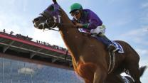 California Chrome on Triple Crown Trail