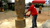 Man turns tree trunks into treasures with chainsaw