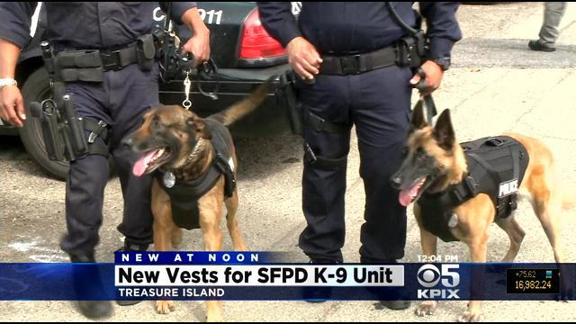 SFPD Outfits Police Dogs With Bulletproof Vests, Medical Packs