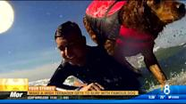 Make-a-Wish teen gets to surf with Ricochet