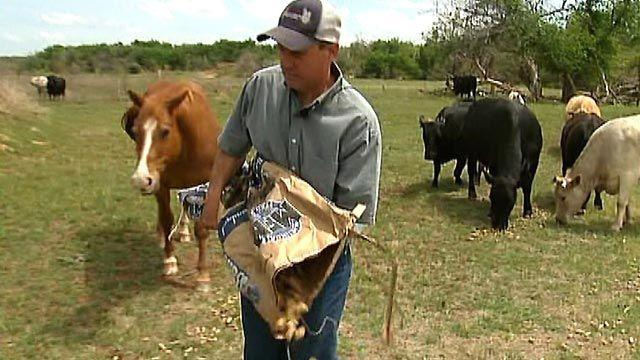 Texas rancher: Why this land is my land, not theirs