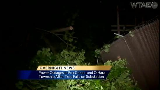 Fallen tree causes power outages in Fox Chapel, O'Hara Township