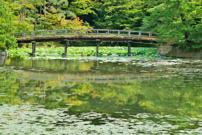 京都賞楓一日散策散步路線修學院離宮千歲橋