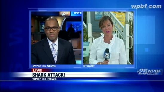 Shark expert reassures swimmers after recent attack