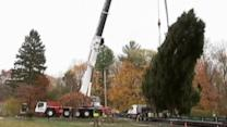 Rockefeller Plaza Christmas tree begins its journey to Manhattan
